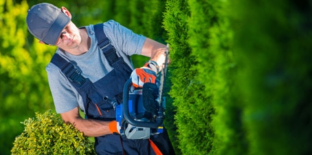 emploi de jardinier