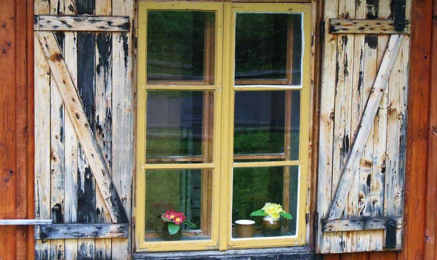 Pourquoi choisir une peinture pour bois?